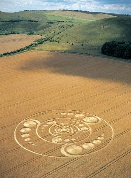 45-Golden-Ball-Hill-Wiltshire-12-08-01-Wheat-L-MFYB